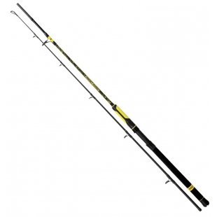 CANNE BLACK CAT PERFECT PASSION BOAT SPIN 240 CM